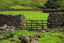 ANGLOPHILIA: Ireland / by Anna Mancini