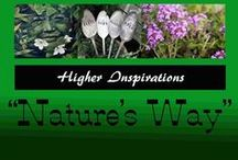 """""""Nature's Way"""" / """"May We All Heal""""♥Divine Mother♥ Help us to be the always hopeful gardeners of the spirit♥Who know that without darkness♥Nothing comes to birth♥ As without light♥Nothing flowers.""""-May Sarton. [This Board is intended to increase my awareness of natural plants for healing, with no side effects. The information is meant for informational purposes only...not meant to diagnose or treat any illness--consult your own trusted health-care professional.] / by Higher Inspirations"""