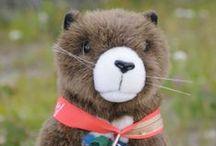 Munchie The Marmot