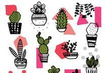 Des jolies illustrations.