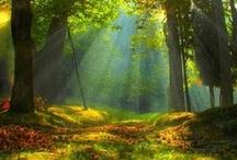 beautiful images / take my breath away...