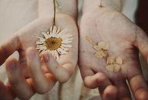 in_bloom / Sbocciare, per esempio. (dall'omonima canzone dei Nirvana)