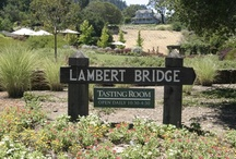 Wineries / What better to go with a meal cooked in a wood-fired oven than a nice glass of wine?