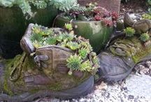 Gardening Feet! / Got some old shoes you don't wear any more? Well put them to some good use in the garden!