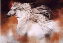 Horse ❤️ Art / 馬