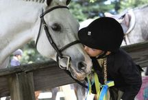 Horse ❤️ Equestrian / 馬術