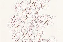 Calligraphy Flourish