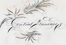 Calligraphy Spencerian