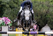 Horse & Buddies★Show Jumping