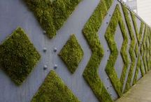 Living Walls. Vertical Gardens. / Restaurants, hotels and public areas with inspiring living spaces.