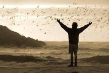 películas  / Estas son las películas que han aportado un granito, para disfrutar y entender lo que es la vida.