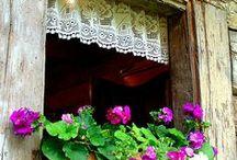 Doors, Balconies and more / by Elsa Garnica
