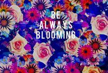 Quotes / by Alexis Feliciano