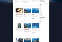 Divers sur mon blog / Divers sujet sur mon blog