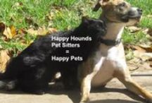 Happy Hounds Pet Sitters / Pet Sitting and Dog Walking in Burleson, TX