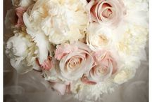 Wedding/Svadba / ♣️