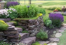 Gardens & Outdoor Spaces / Beautiful gardens and outdoor spaces.  Some day, my garden will look like these.