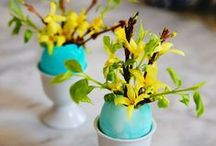 Spring Flowers and Blooms / Everything's coming up roses! And peonies! And daffodils! And...