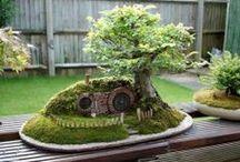 Fairy mini garden