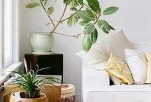 DREAM HOME / All the things I need in a home, plants, paintings, wooden floors, colour, pretty things and more.