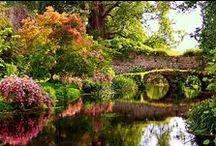 Giardini nel Mondo
