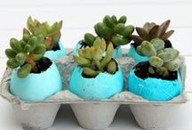 Best Easter Egg Decorations / Use your eggs for more than just basket beauties!