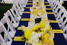 Modro-žlutá svatba (vše v 1)