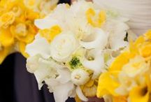 Kleur - Geel en wit