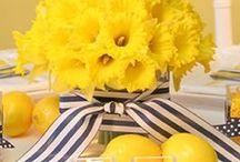 Kleur - Geel en Swart