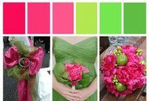 Kleur - Groen en pienk