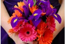 Kleur - Pers en oranje