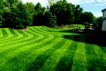 Mowing & Lawncare Tips