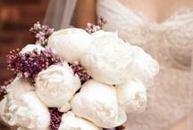 Wedding / Weddings Wedding ideas Wedding cakes Wedding dresses  / by Olivia