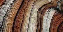 Wood Species / We think wood is beautiful! Check out these unique wood cuts and grains. www.GeneralFinishes.com