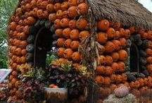 Autumn Decorating