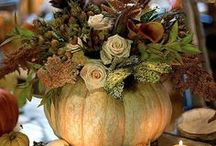 Festive Fall / Fall Decor and Autumn Scenery / by Pam Kathryn