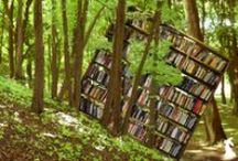 Librerie uniche e particolari