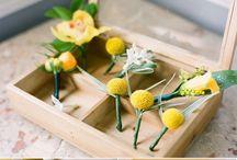 Wedding : Yellow and Grey / by Stephanie Stocking