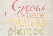 Garden Quotes / Best quotes to inspire gardeners