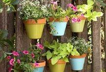 Garden Love / Gardens & gardening