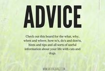 Cat and dog advice / Helpful information about many aspects of life with cats and dogs. There are handy how to's, tips on basic dog training, information about common pet health concerns, and free downloadable guides on puppy and kitten care. We even have useful step by step articles on how to help solve many pet related problems like what to do if your cat gets pregnant or how to stop your dog eating his poop or even hints and tips on achieving show stopping coat condition for your upcoming dog show.