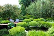 Landscaped Gardens / If you're looking for some inspiration for your own garden, or are looking to buy a property, whether in London or the country, John D Wood & Co.'s landscaped gardens board can help.