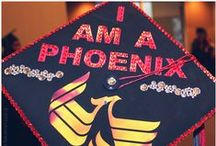 UNIVERSITY OF PHOENIX / The University of Phoenix (UOPX) is an American for-profit institution of higher learning, headquartered in Phoenix, Arizona, United States. The university has an open-enrollment admission policy, requiring a high-school diploma, GED, or its equivalent as its criterion for admissions.[4] The university has 112 campuses worldwide and confers degrees in over 100 degree programs at the associate, bachelor's, master's and doctoral degree levels / by Univerro
