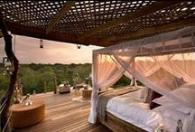 Game lodge interiors and exteriors