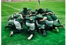 Rugby! ... And its boys ;)