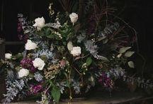 Wedding / by Lesley Alton