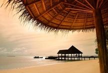"""ROBINSON Club Maldives / Der ROBINSON FeelGood® Club Maldives wurde im Dezember 2009 auf der eigenen Malediven-Insel """"Funamadua"""" eröffnet: Die 107.300 Quadratmeter große Insel ist Teil des Gaaf-Alif-Atolls im Süden der Malediven. Der exklusive Club mit insgesamt 101 Bungalows bietet neben gehobenem Komfort in nahezu unberührter Natur einen außergewöhnlich breiten weißen Sandstrand und ist umgeben von spektakulären und intakten Korallenriffen. Das Hausriff ist zwischen 20 bis 200 Metern entfernt."""