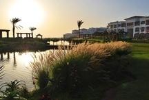 ROBINSON Club Agadir / Der ROBINSON Club Agadir in Marokko liegt in direkter Nachbarschaft zum Sommerpalast der marokkanischen Königsfamilie. Die Anlage liegt am 8,5 km langen Sandstrand von Agadir und ist nur durch eine faszinierende Dünenlandschaft vom Atlantik getrennt. Von fast jedem Punkt der Anlage haben Gäste einen herrlichen Blick auf den breiten, flach abfallenden Sandstrand und das Atlasgebirge. Die hohe Brandung bietet ideale Voraussetzungen für Wassersport wie Wellenreiten oder Surfen.