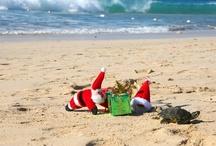 Weihnachten bei ROBINSON / Ob auf den Malediven oder an der Algarve: Auch 2012 war der Weihnachtsmann quer über den ganzen Erdball unterwegs, um den ROBINSON Gästen pünktlich ihre Geschenke zu bringen...