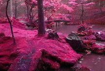 Cool landscapes